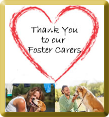 Thanks and love to our foster carers. You make it happen xxx